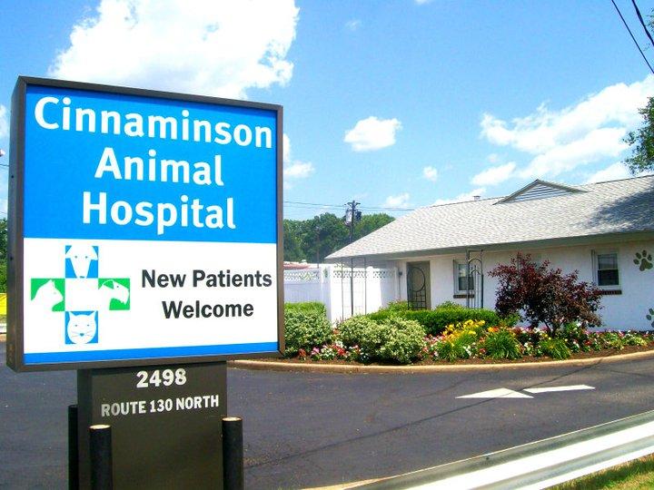 Pet Friendly Cinnaminson Animal Hospital