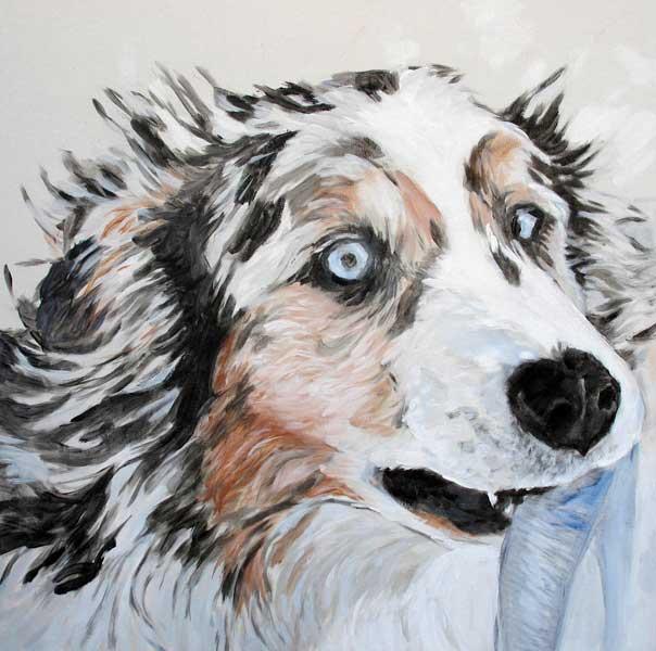 Pet Friendly The Canvas Dog - Pet Portrait Studio