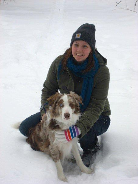Pet Friendly CoCoBear Pet Care