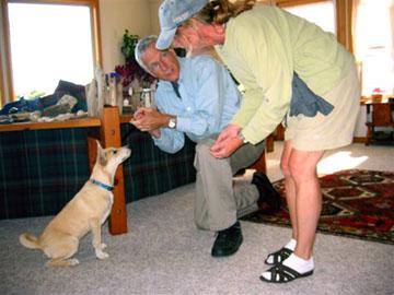 Pet Friendly William Stavers Dog Trainer