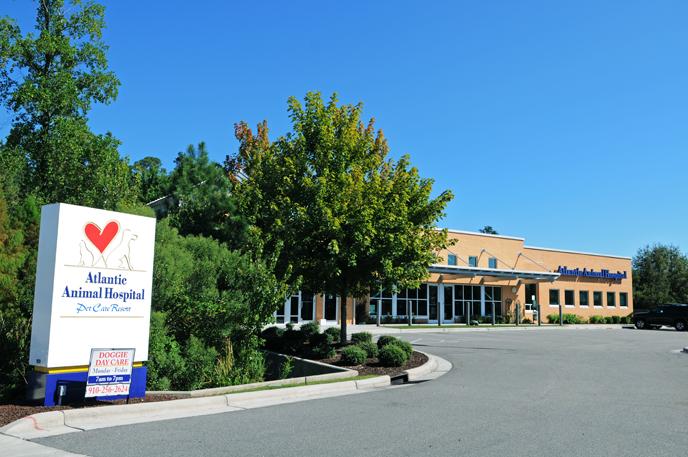Pet Friendly Atlantic Animal Hospital & Pet Care Resort