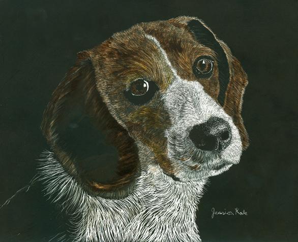 Pet Friendly Jessica Kale Illustration