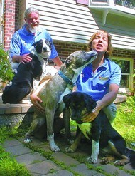 Pet Friendly Bark Busters Home Dog Training - Thurmont