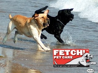 Pet Friendly Fetch! Pet Care of West Hills and South Hills
