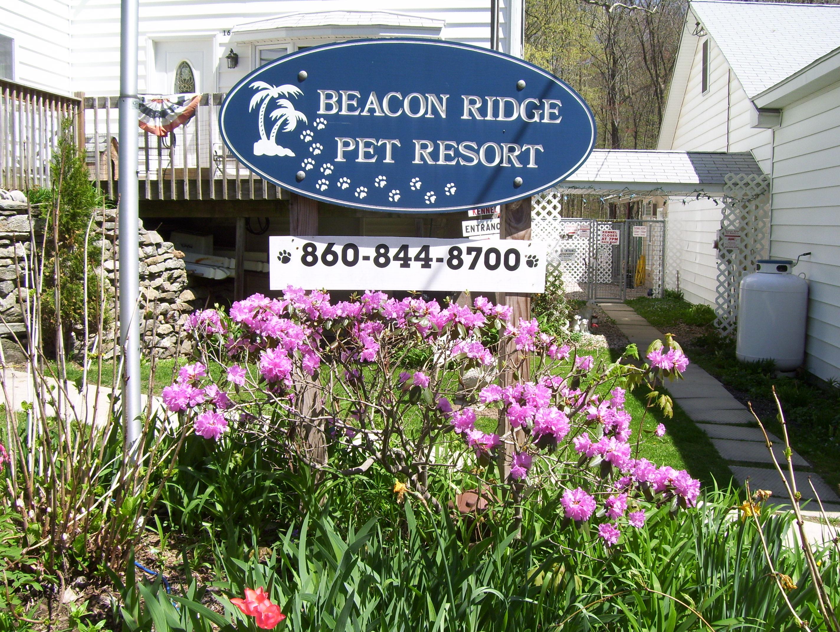 Pet Friendly Beacon Ridge Pet Resort