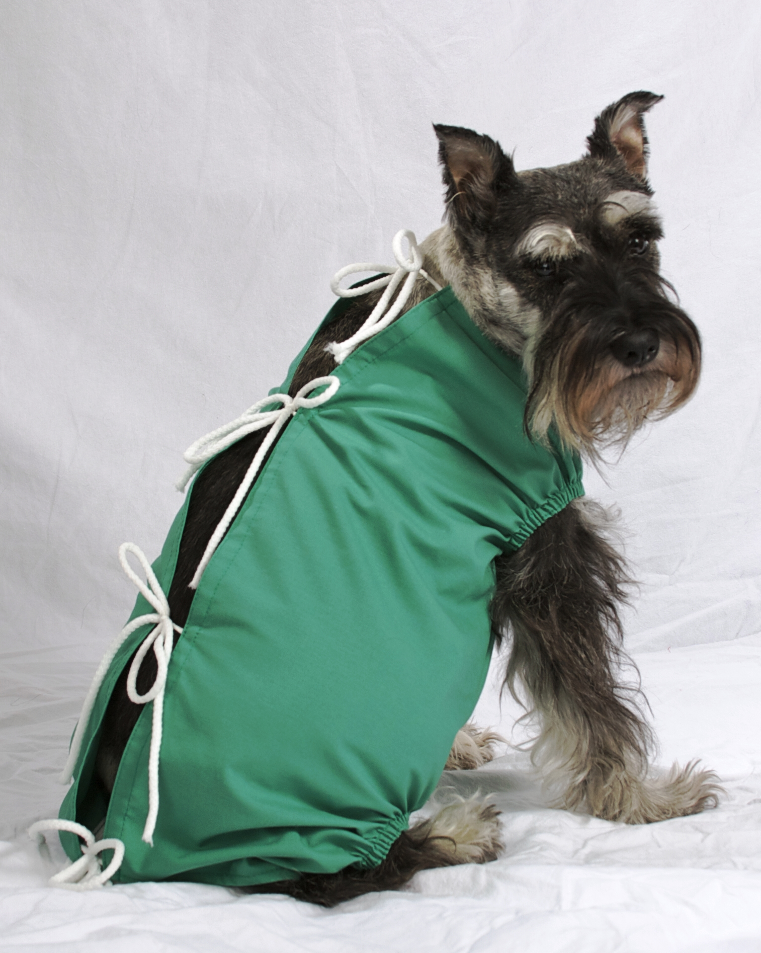 Pet Friendly Scrubs for Pets