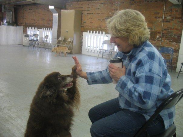 Pet Friendly Paws for Praise