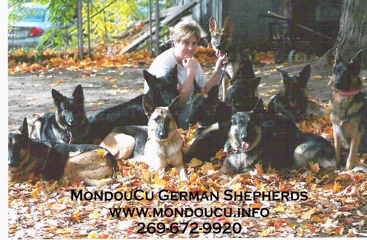Pet Friendly MondouCu Animal Training