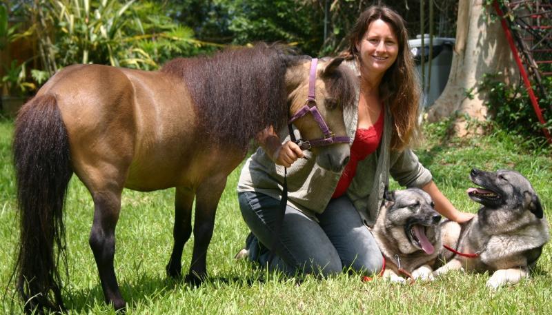Pet Friendly Balanced Obedience