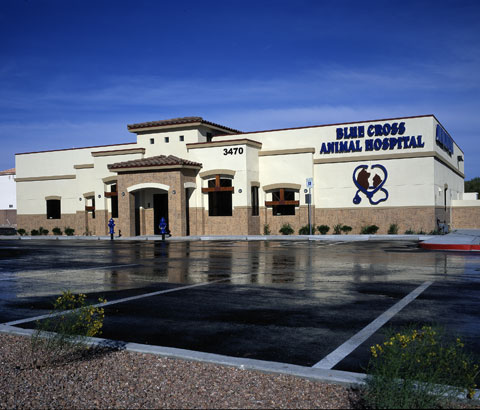 Pet Friendly Blue Cross Animal Hospital