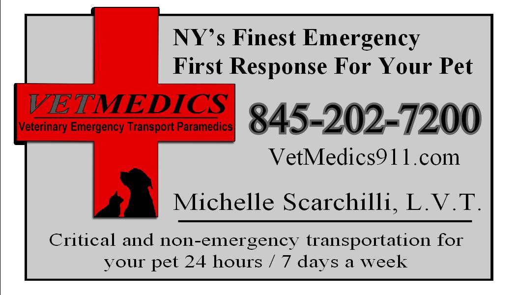 Pet Friendly VetMedics Inc