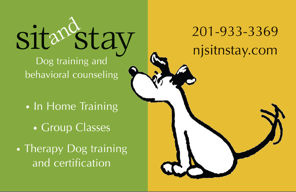 Pet Friendly Sit and Stay Dog Training & Behavioral Counseling