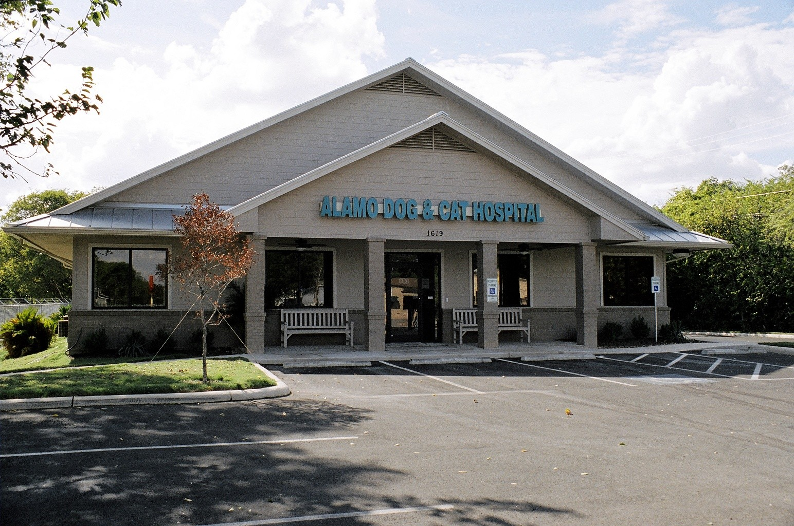 Pet Friendly Alamo Dog and Cat Hospital