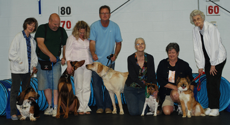 Clermont County Dog Training Club