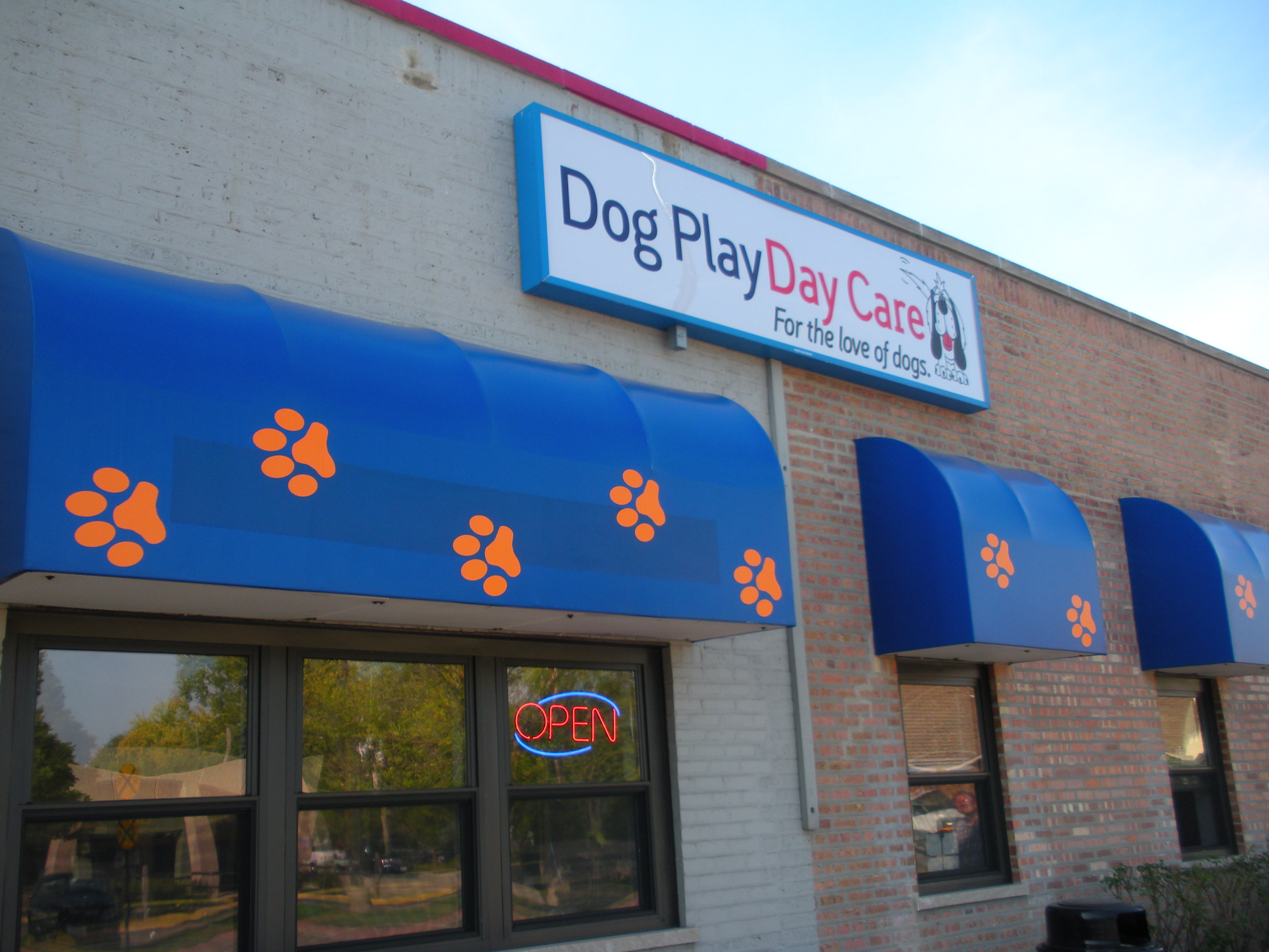Pet Friendly Dog Play Day Care
