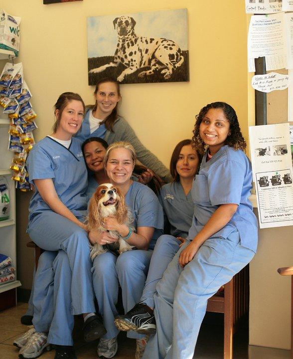 Pet Friendly Prytania Veterinary Hospital