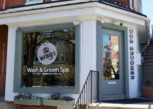 Pet Friendly WAGS Wash And Groom Spa