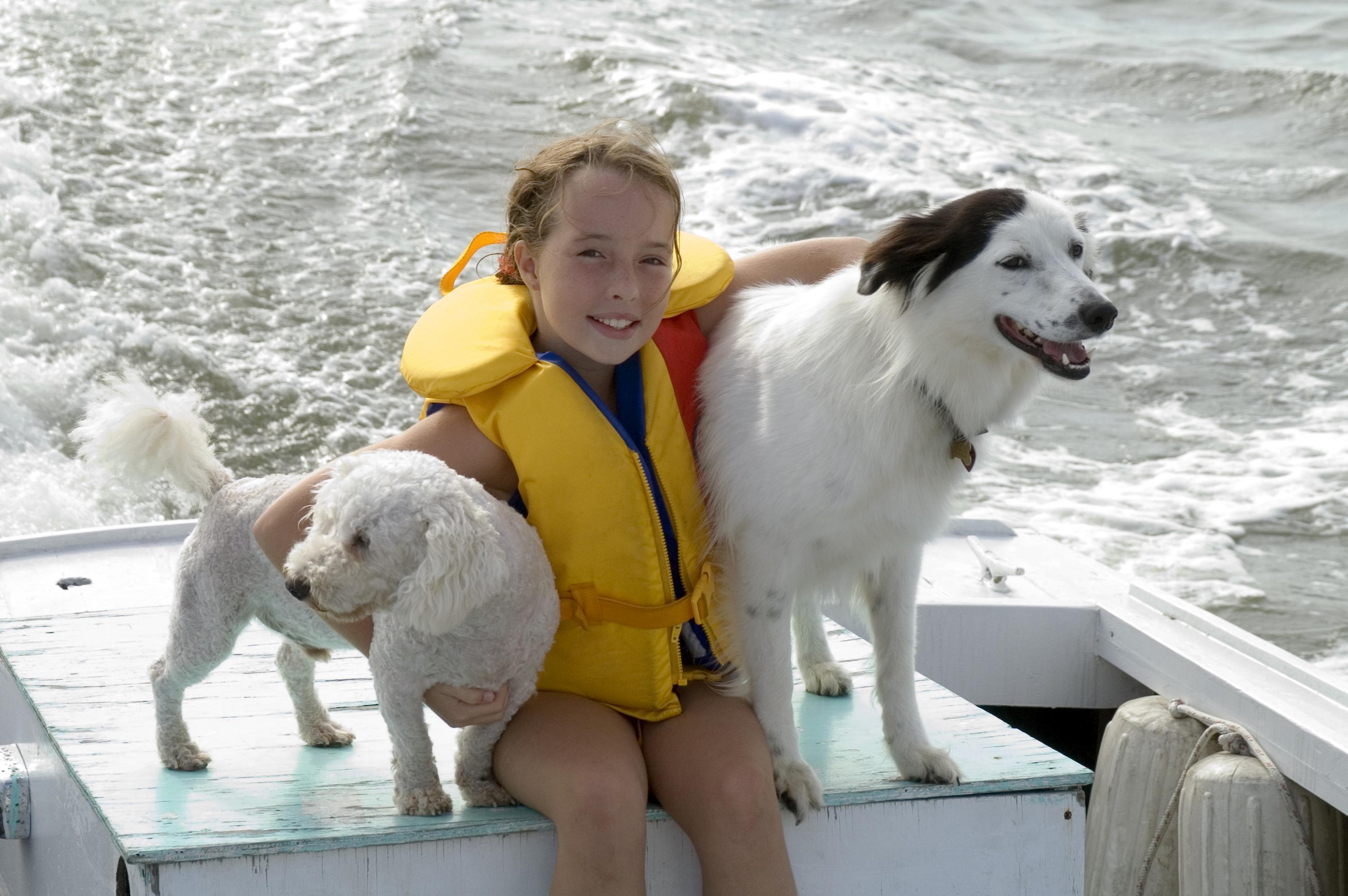 Dog Owner's Guide to Orange Beach, AL
