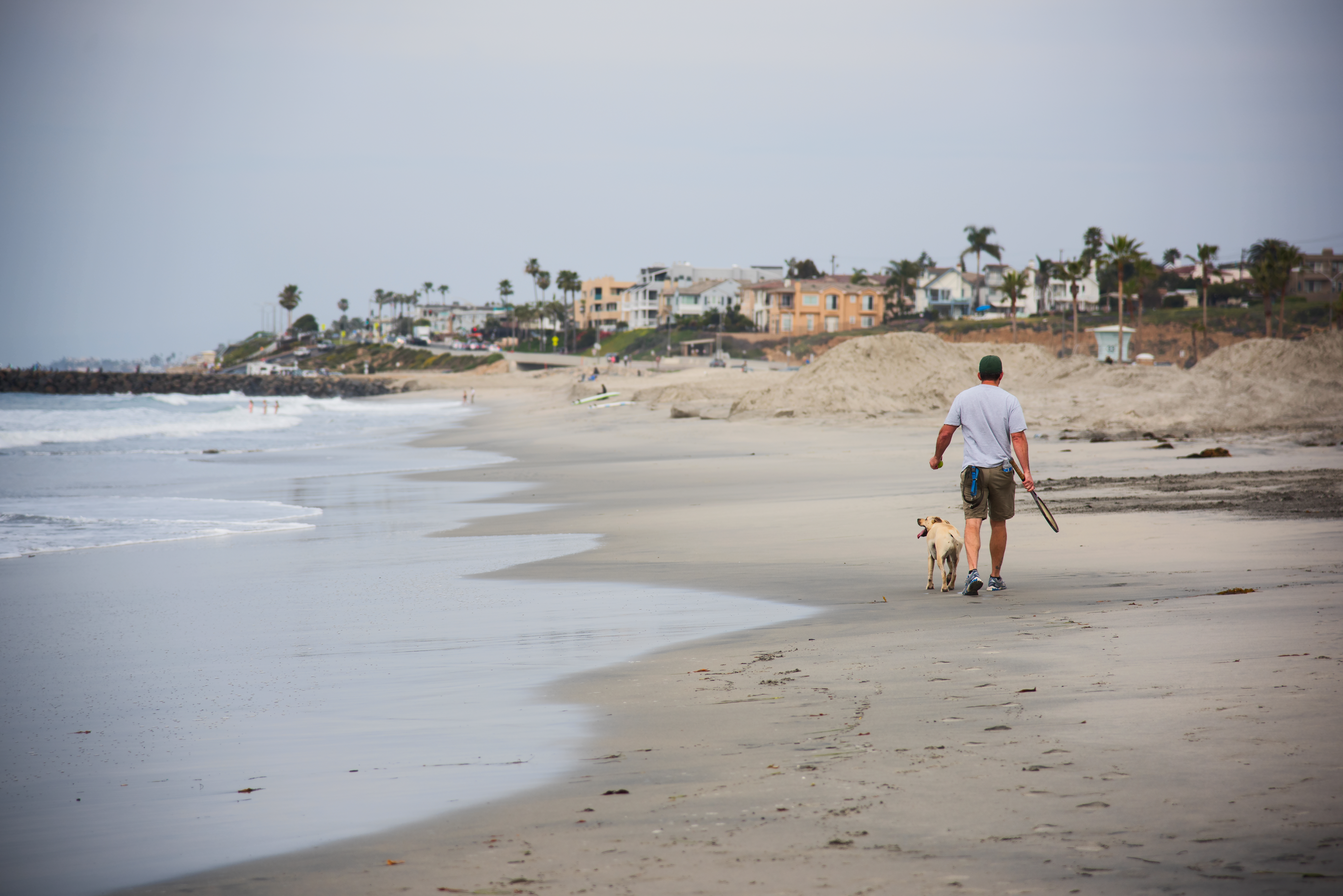 Dog Owner's Guide to Carlsbad, CA