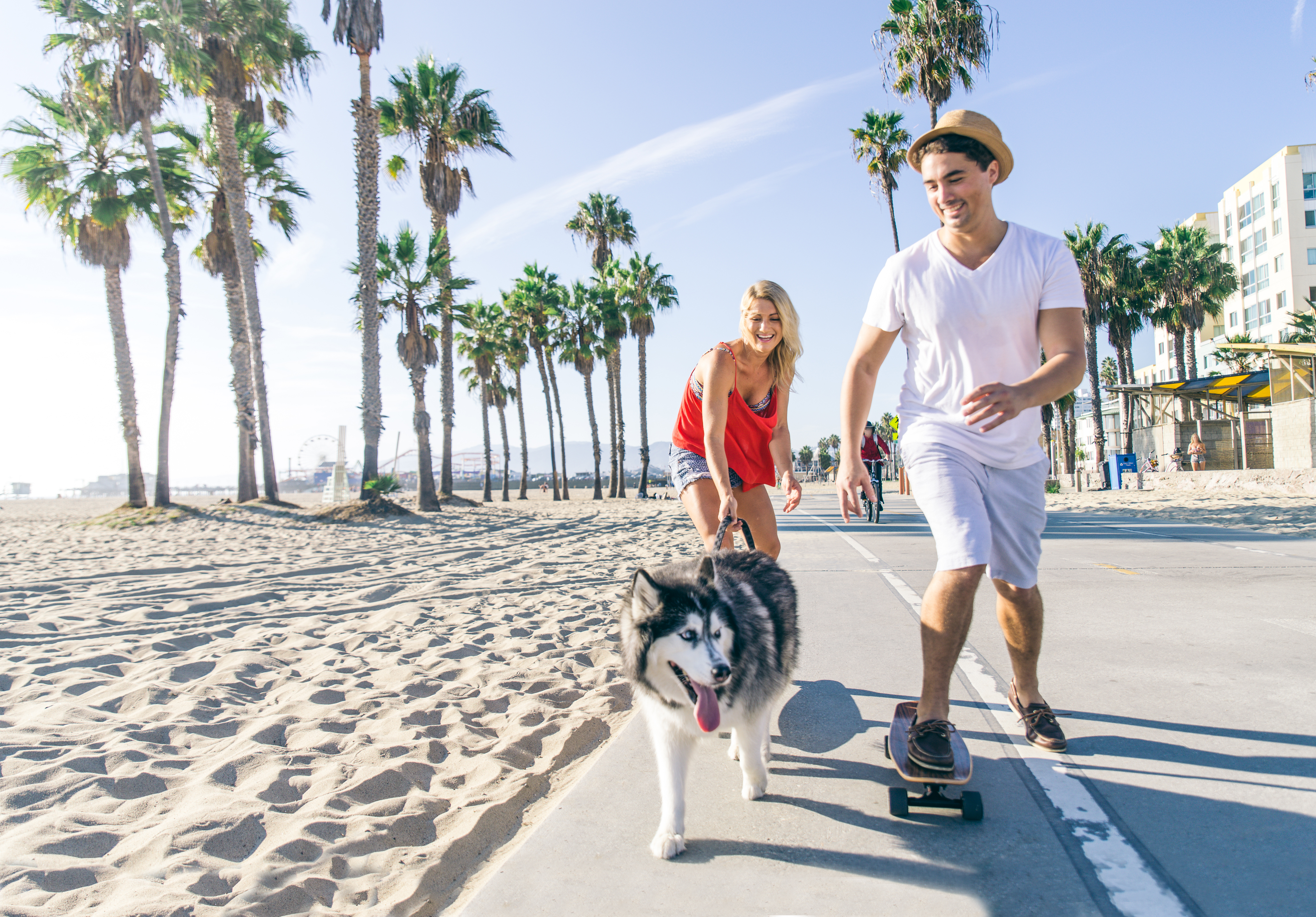 Dog Owner's Guide to Santa Monica, CA
