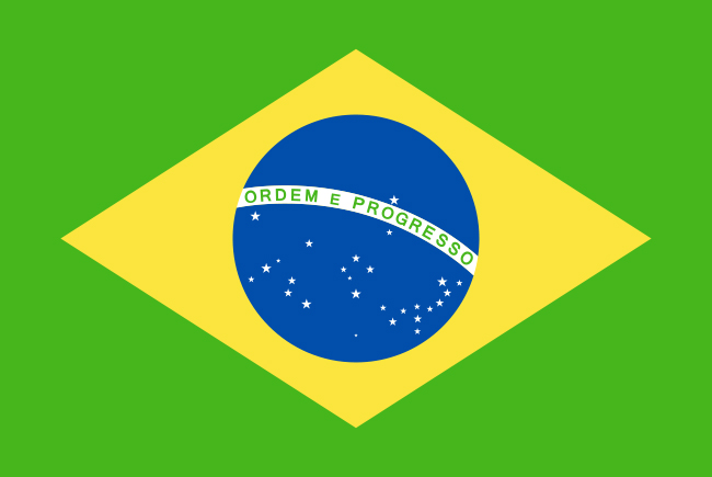 Brazil Pet Travel Regulations